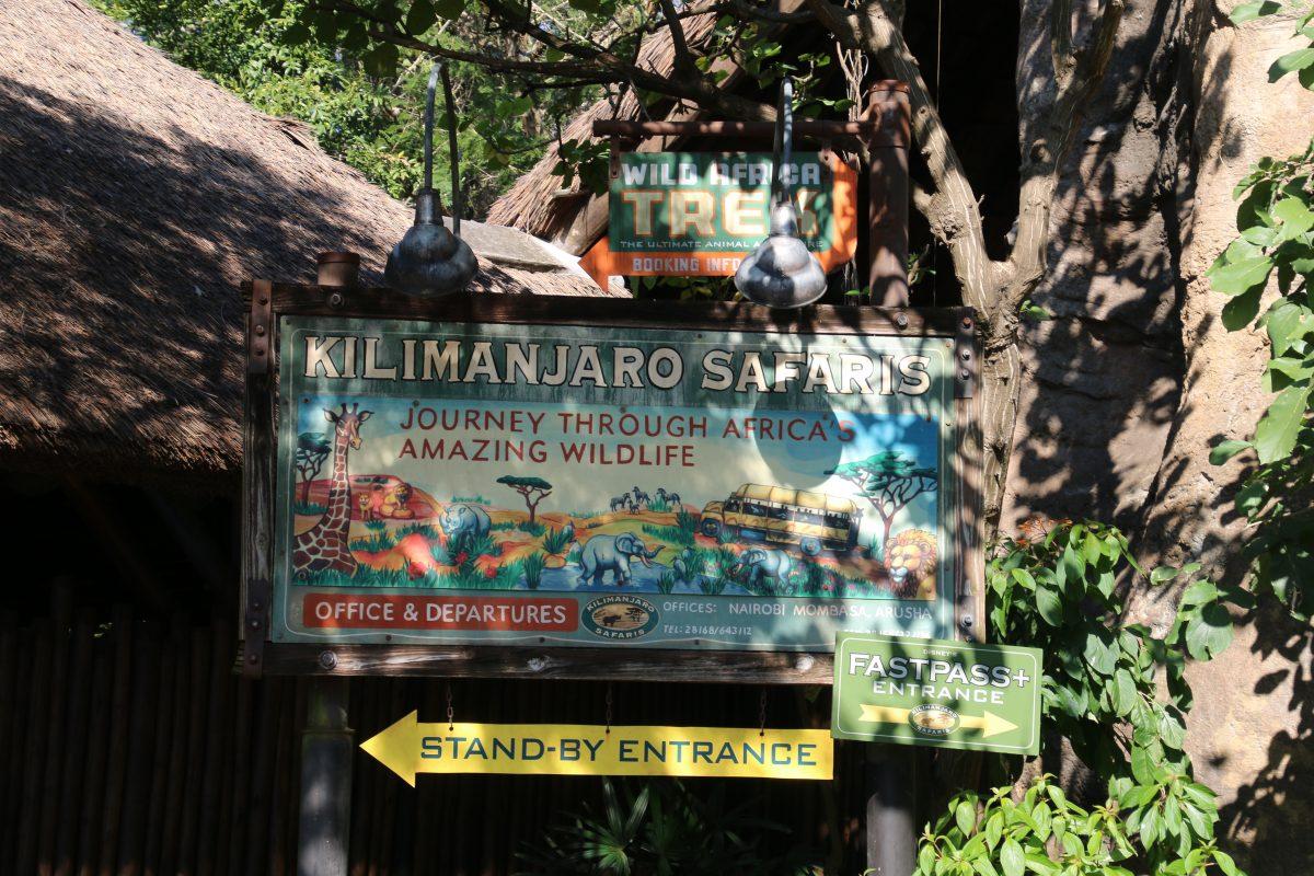 アニマルキングダム キリマンジャロサファリ 入口